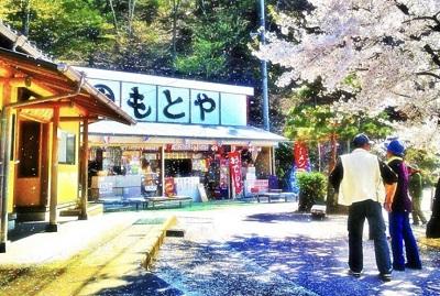 お店外観 桜の時期