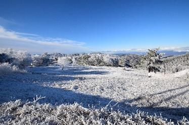 峰の原高原の冬 本文画像01