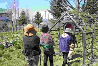 2019年度第1回ガーデンづくり講習会の様子4