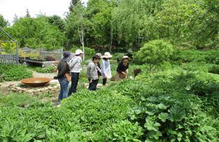 5月14日第2回ガーデンづくり講習会写真2