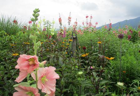第4回ガーデンづくり講習会 風景写真