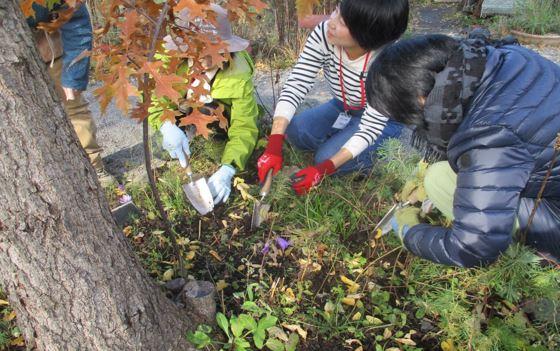 ガーデンづくり講習会写真3