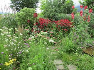 2021年7月6日ガーデンつくり講習会写真2